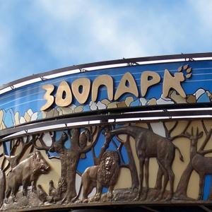 Зоопарки Новгорода